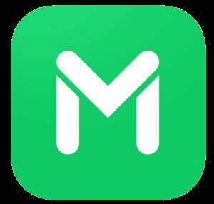 M Line Logo